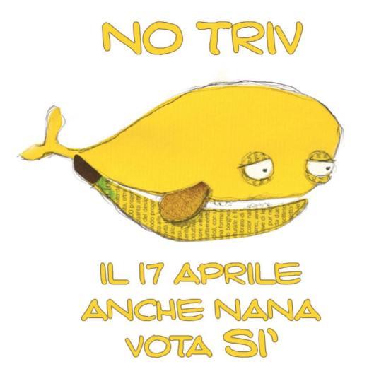 Nana NoTriv